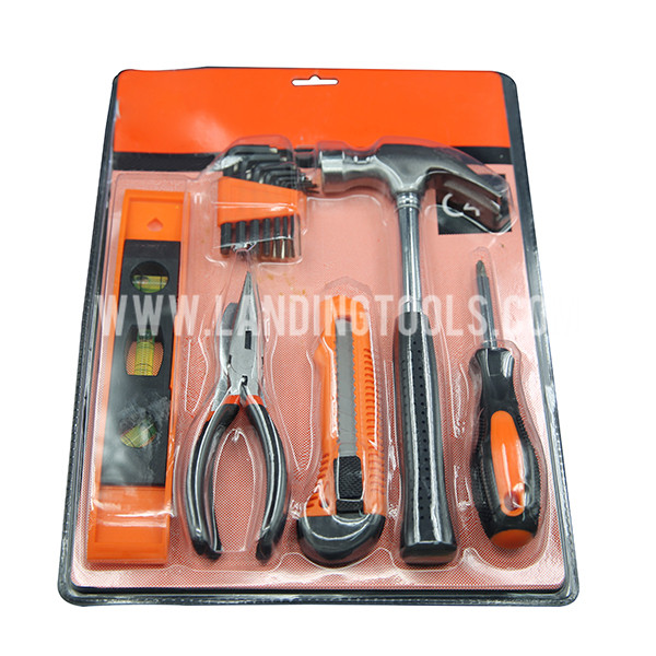 Promotional Top Quality 22PCS Tools Set  P10040