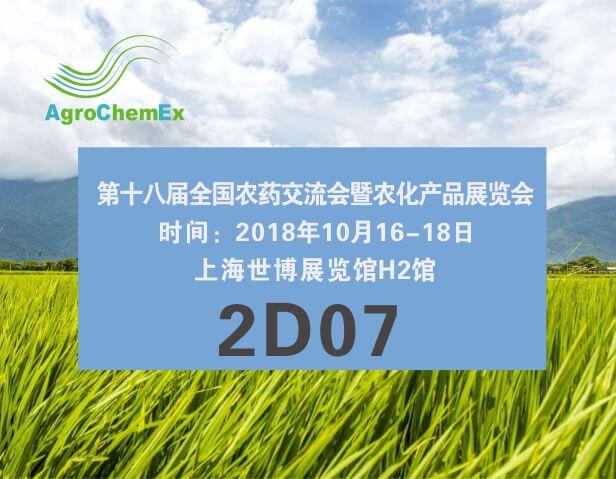 相約十月上海ACE展會