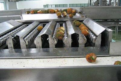 Mango Pineapple Juice Processing Line