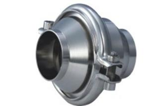 Welded Check Valve
