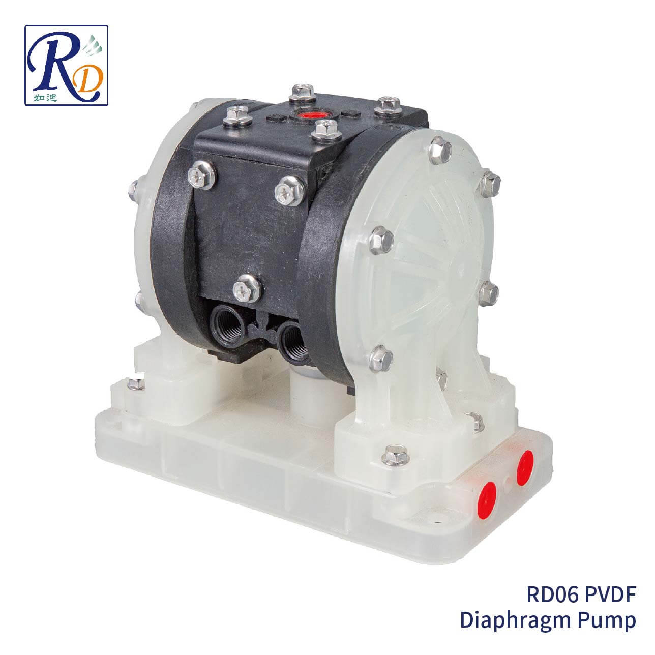 RD06 PVDF Diaphragm Pump
