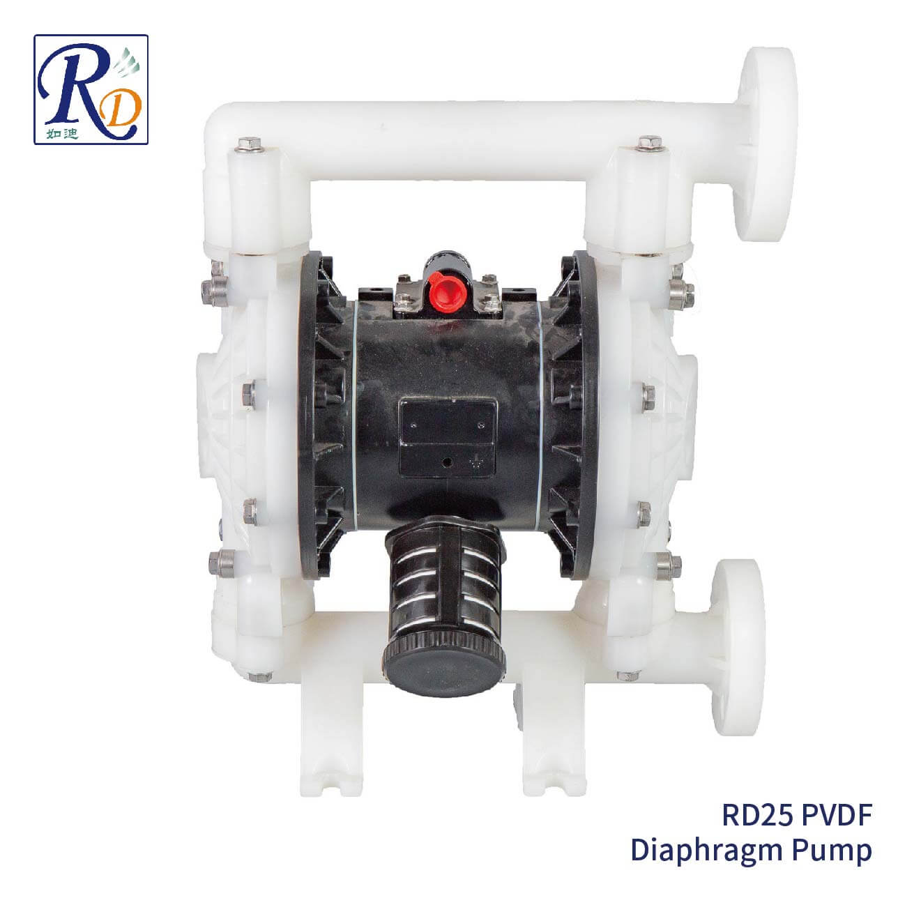 RD25 PVDF Diaphragm Pump