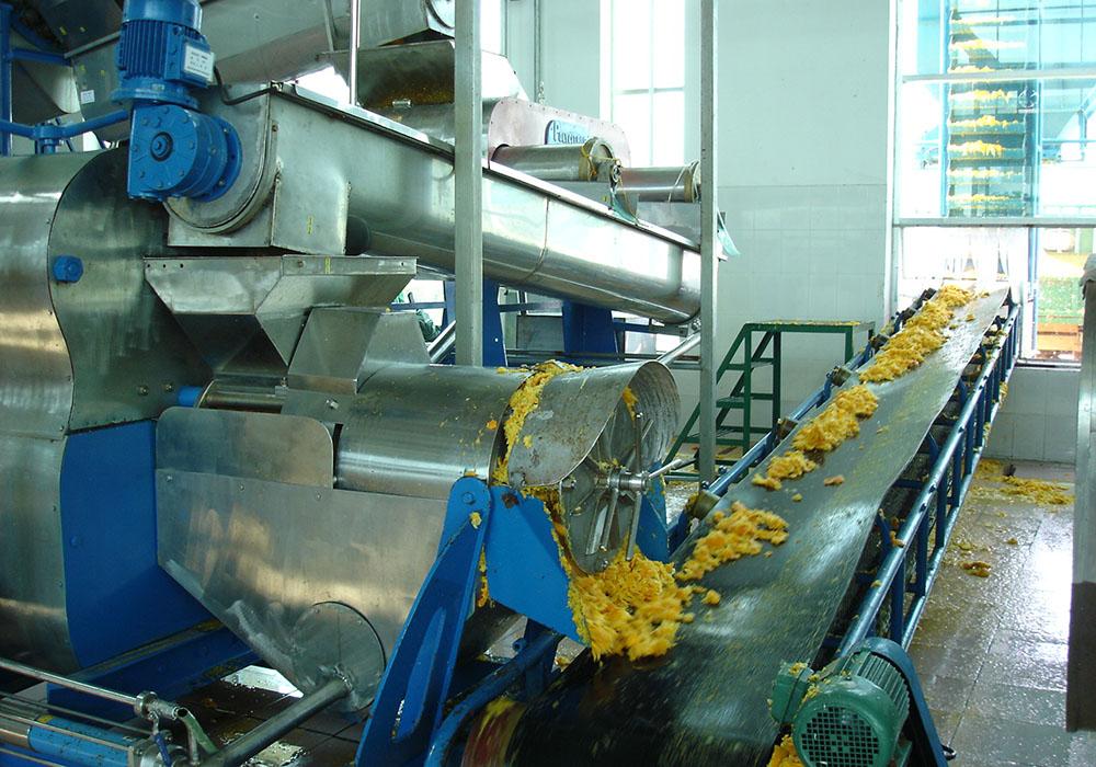 Citrus Processing Line