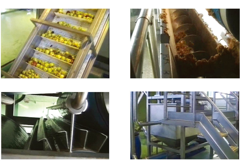 Apple/Pear Processing Line
