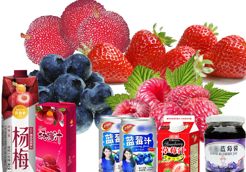 Blueberry/Raspberry/Strawberry Beverage Processing Line