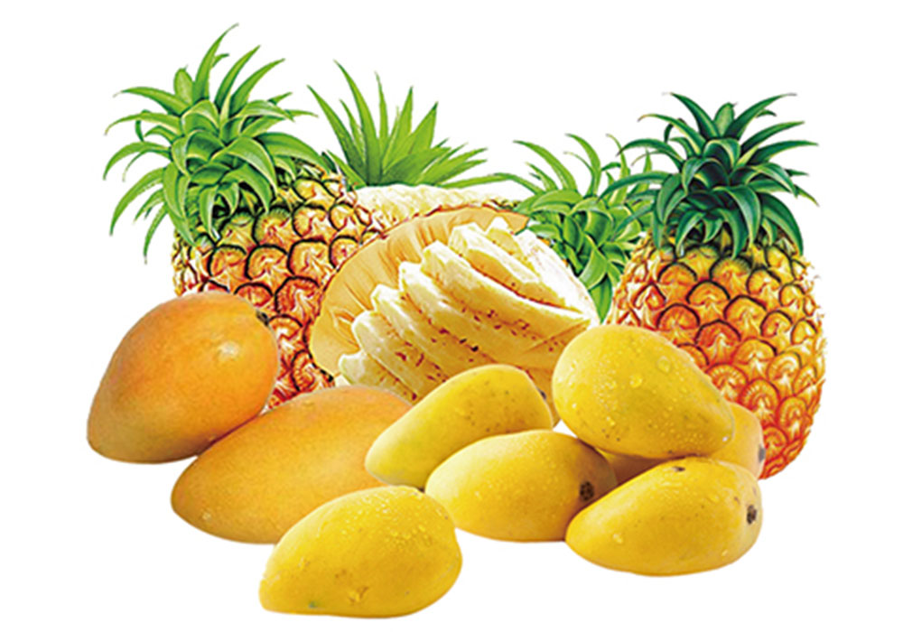 Mango/Pineapple Juice Processing Plant