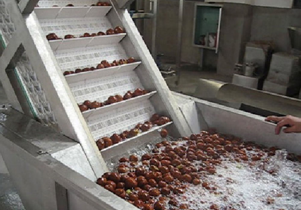 Date/Jujube Processing Line