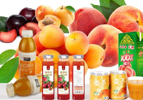 Apricot/Plum/Peach Beverage Processing Line