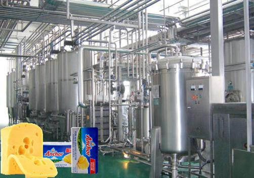 AMF Processing Line