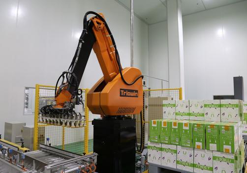 Robot de paletización