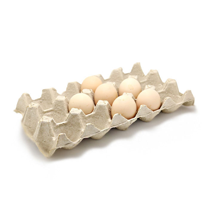 Egg Tray for 15 pieces