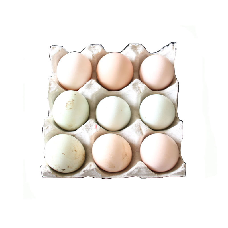 Egg Tray for 9 pieces
