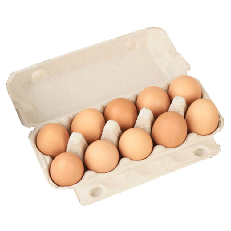 Egg Tray With Lid