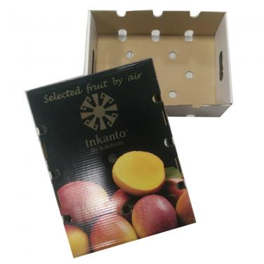 Strong Fruit Packing Box