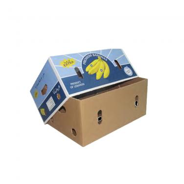 Lid and Base Corrugated Banana Carton Box