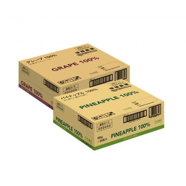 Pineapple Carton Box for Packaging and Shipping