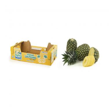 Pineapple Export Boxes