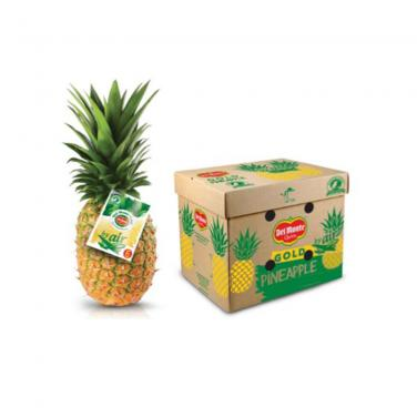 Pineapple Export Cardboard Boxes