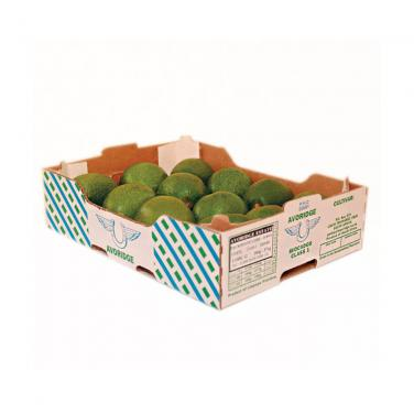 Fruit Apple corrugated gift Avocado packaging box