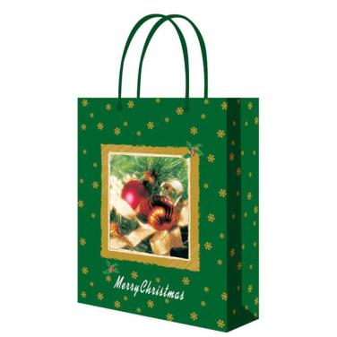 Custom Paper Gift Shopping Bag