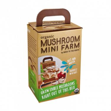 Custom Made Corrugated Paper Mushroom Box