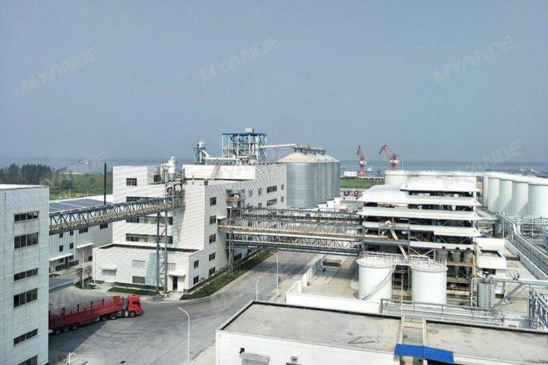 1,000TPD Rapeseed and Soybean Oil Extraction Plant