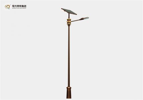Solar street light-005
