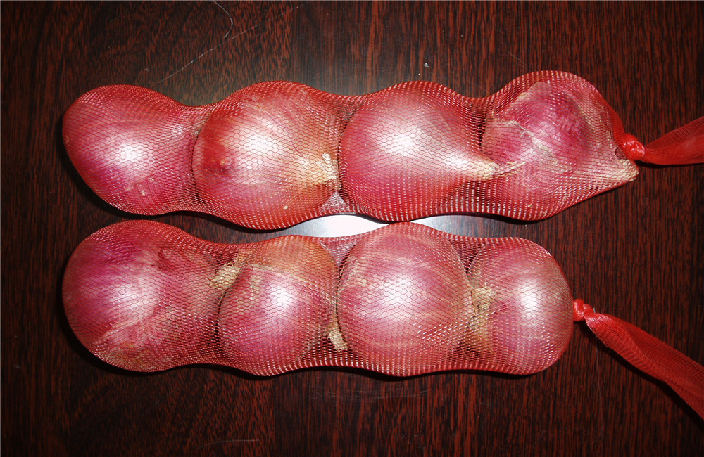 Red Onion In Nylon Bags