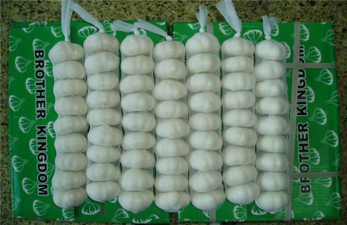 Pure White Garlic In Long Shape Bags