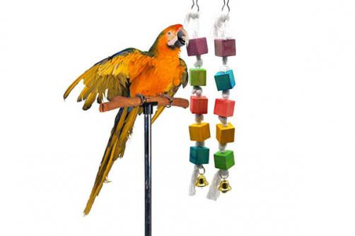 Natural Wood Bird Toy