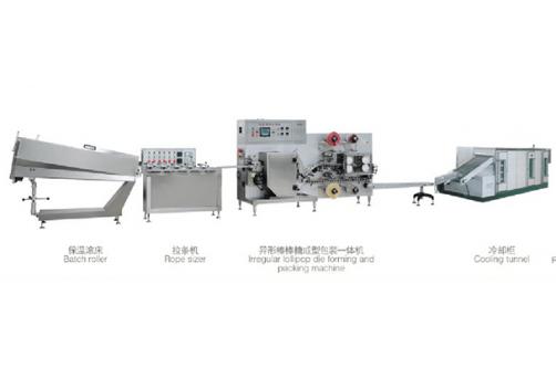 Shaped Lollipop Production Line HTL-TE600B