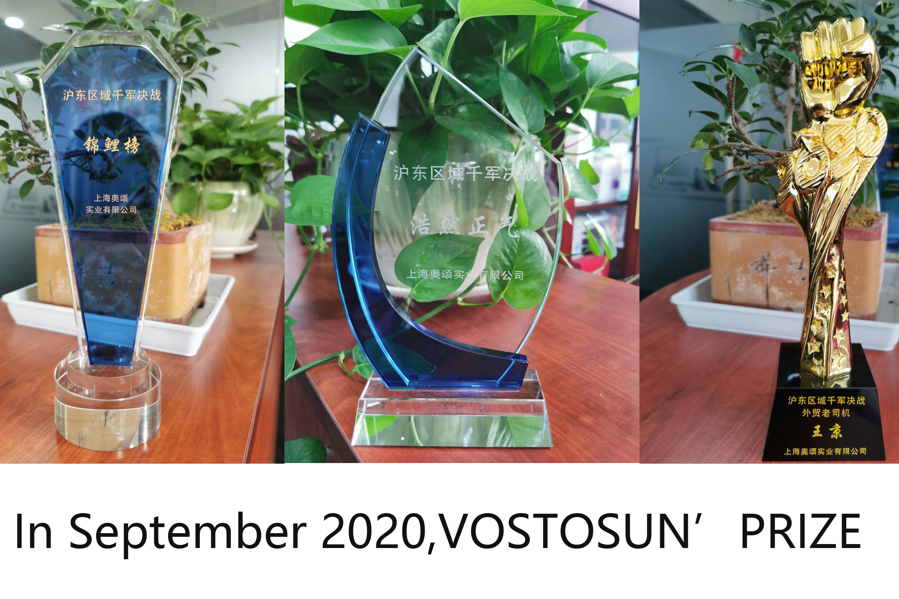 In September 2020, Vostosun achieved good results in the Alibaba Sourcing Festival.