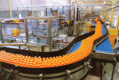Blue veined cheese processing line