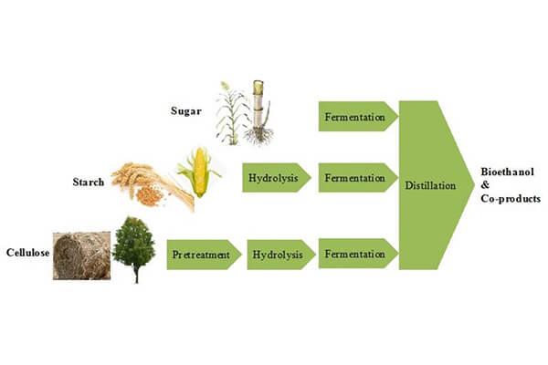 Bioethanol process