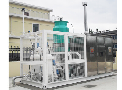 fuel vapor recovery system