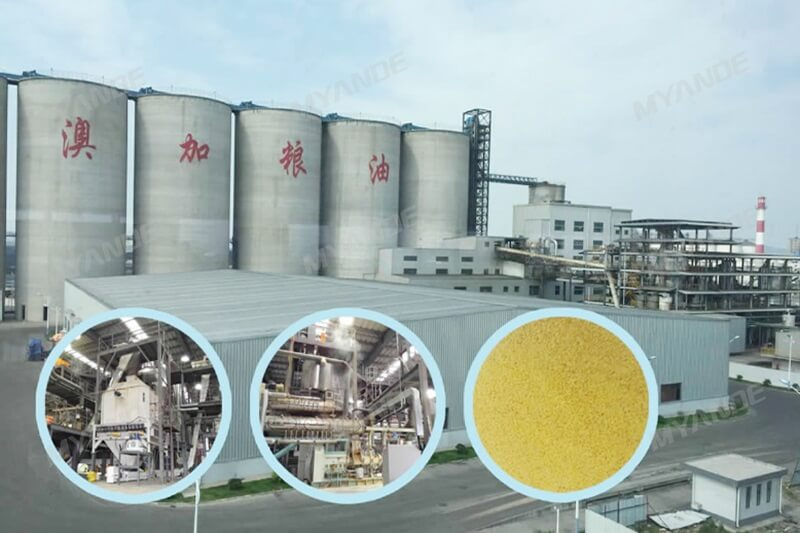 250TPD Extruded Soybean Meal Project